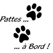 PATTES-A-BORD